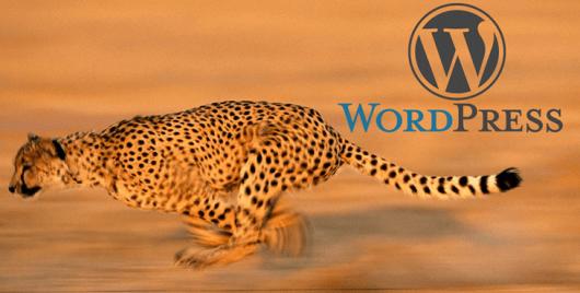 Wordpress hosting as fast as a cheeta